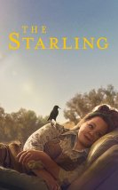 The Starling-Seyret